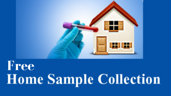 Blood Test at Home - Free Sample Collection from Home